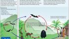 [ADEGA] Alterar a natureza non sae de balde, e o ébola